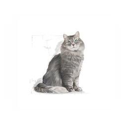 Royal Canin Sensible Kedi Maması 4 KG - Thumbnail