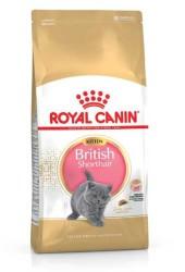 Royal Canin - Royal Canin Yavru British Shorthair Kedi Maması 2 KG