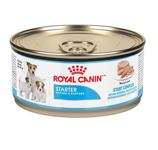 Royal Canin Starter Mousse Yavru Köpek Konservesi 195 GR