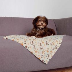 Trixie - Trixie Köpek Battaniyesi 75X50cm Beyaz/Bej