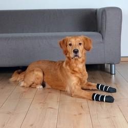 Trixie Köpek Çorabı, Kaymaz M–L, 2 Adet - Thumbnail
