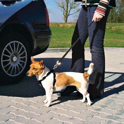 Trixie Köpek Emniyet Kemeri L 70-90cm