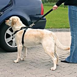 Trixie Köpek Emniyet Kemeri L 70-90cm - Thumbnail