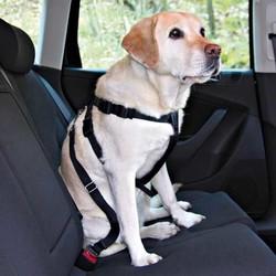 Trixie Köpek Emniyet Kemeri XL 80-110cm - Thumbnail