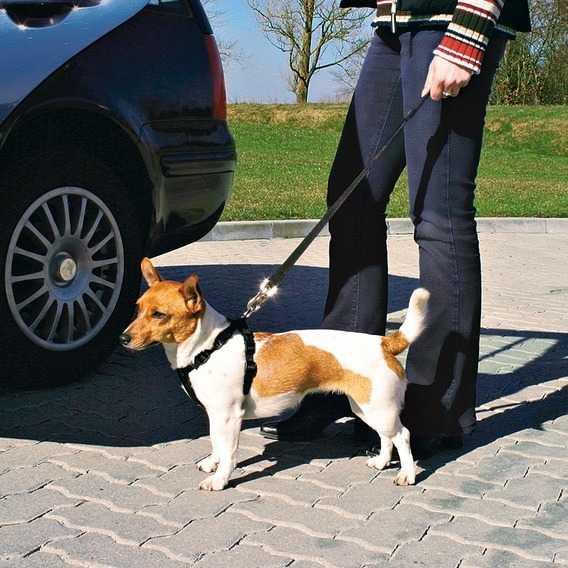 Trixie Köpek Emniyet Kemeri XL 80-110cm