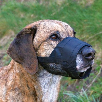 Trixie Köpek Fileli Ağızlık S-M, Burun 14-20cm