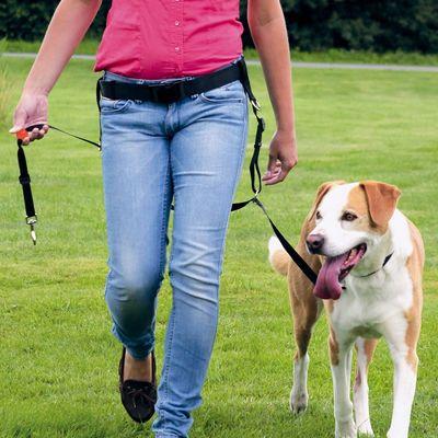 Trixie Köpek Kolay Yürüme Gezdirme Kayışı Seti
