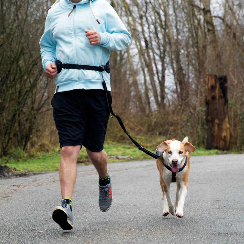Trixie Köpek Koşu Yürüyüş Bel Kemeri Ve Kayışı
