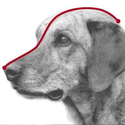 Trixie Köpek Plastik Ağızlık XL 31 Cm