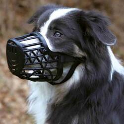 Trixie Köpek Plastik Ağızlık XL 31 Cm - Thumbnail