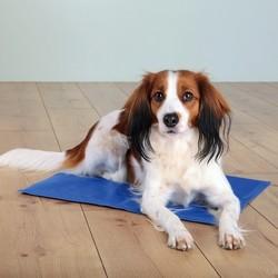 Trixie Köpek Soğutuculu Yatak 90X50cm, Mavi - Thumbnail