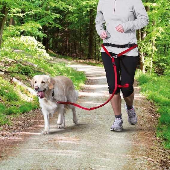 Trixie Köpek_Yürüme&Koşma Kemeri&Kayışı , Kırmızı
