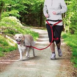 Trixie Köpek_Yürüme&Koşma Kemeri&Kayışı , Kırmızı - Thumbnail