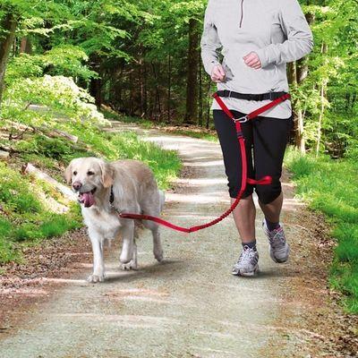 Trixie Köpek Yürüme,Koşma Kemeri&Kayışı , Kırmızı