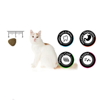VanCat Tavuklu Kedi Maması 15 KG