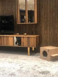 Woofy Catsy 16-A Kedi Evi - Thumbnail